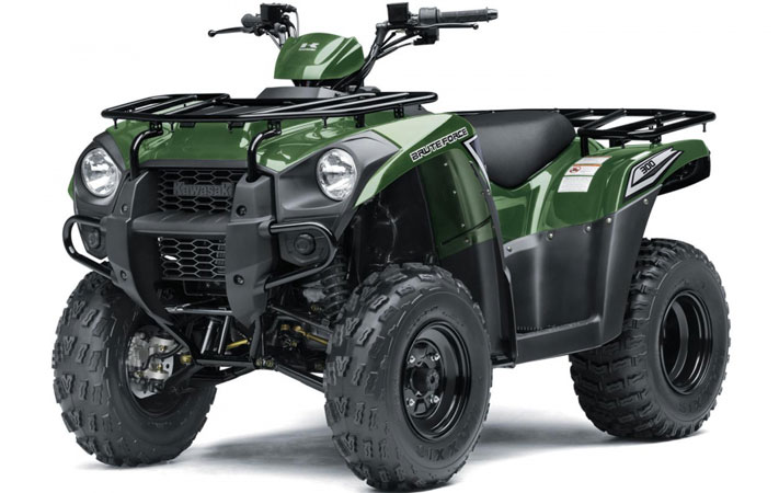 Kawasaki-Brute-Force-300