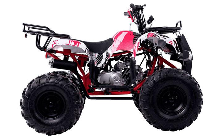 Wels-Thunder-125-BASIC